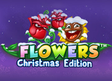 Flowers Christmas Edition Free Slots